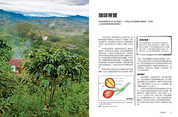 世界咖啡地圖內文_頁面_011