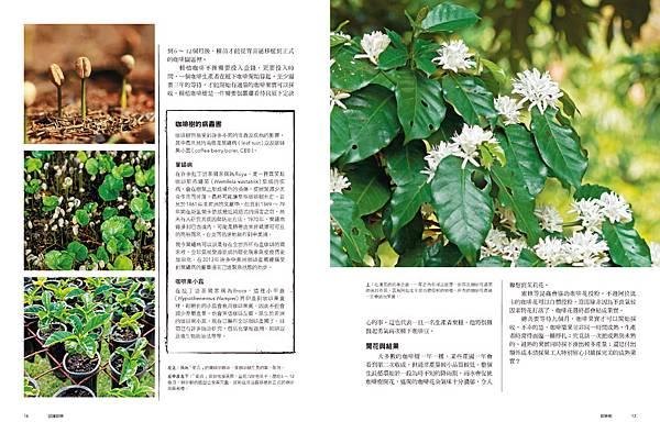 世界咖啡地圖內文_頁面_009