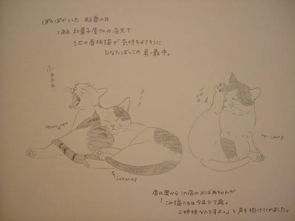 莫莉薊野手繪稿 (局部近照).jpg