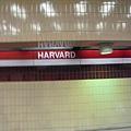 終於到了哈佛大學Harvard University