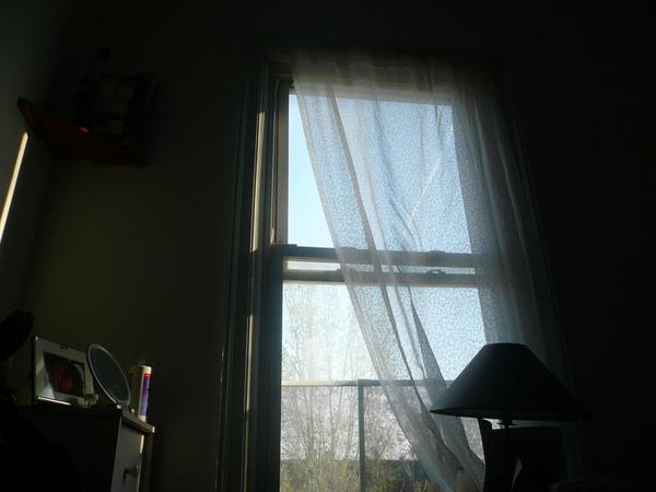 早晨醒在Lind的房間
