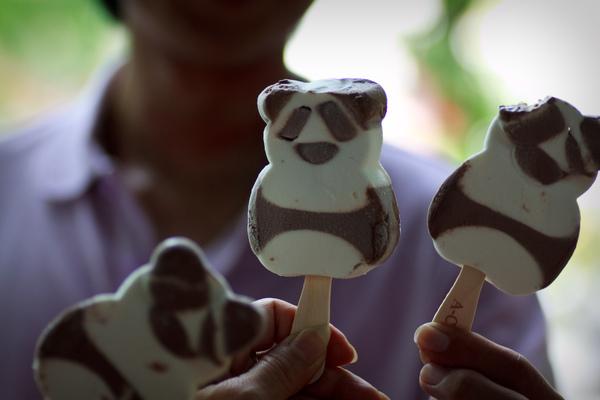 好吃的熊貓雪糕,還來不及入鏡就被維辰叔叔咬一口溜....