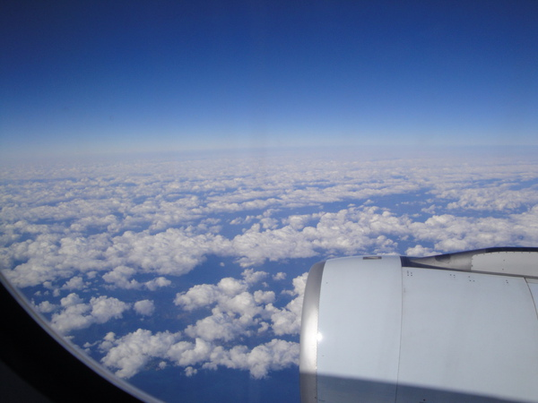 福岡回來的飛機上.jpg