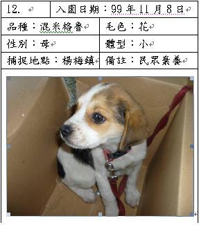 桃園縣動物防疫所公告20101108.JPG