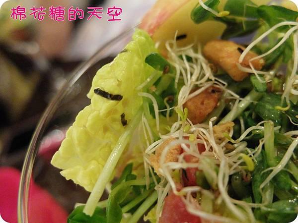 00菜色沙拉2.JPG