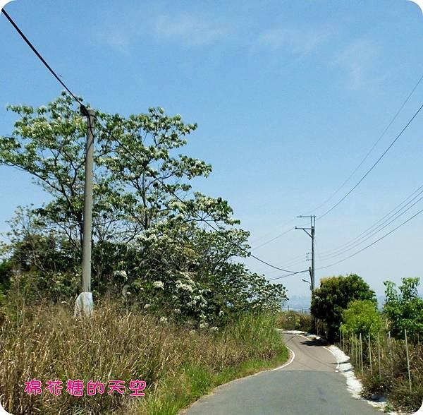 00遠距5.JPG