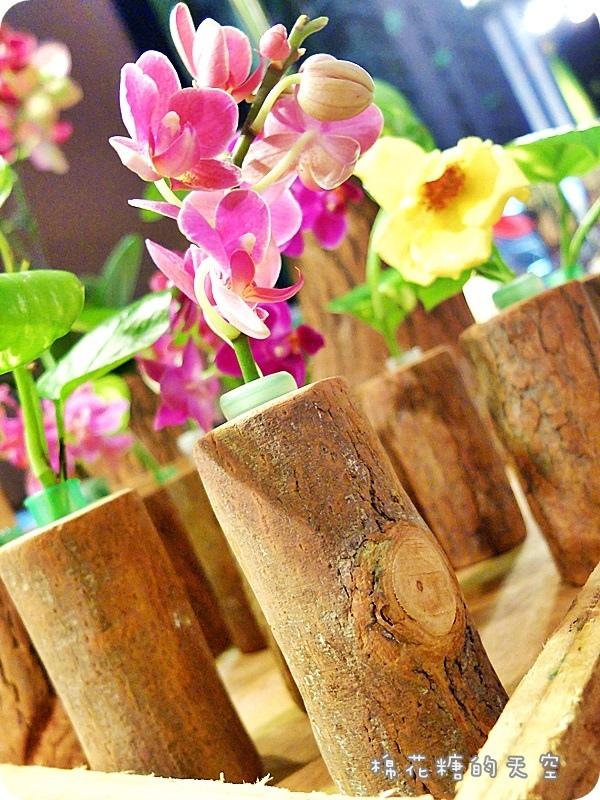 1469347980 1196352895 - 《台中購物》金典農夫市集發現亮點!原木製作各式盆栽~美麗蘭花、小巧多肉都有美美的家囉!