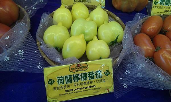 荷蘭~檸檬番茄