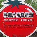 歐洲~水蜜桃番茄
