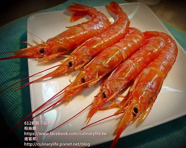 天使紅蝦1