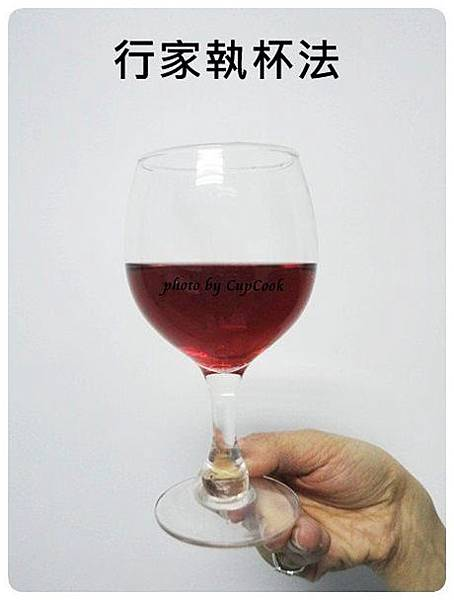 葡萄酒酒杯拿法 wine glasses (4)