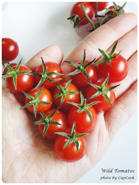 tomato (36)