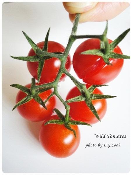 tomato (26)
