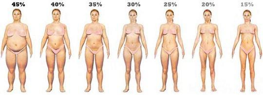 body-fat-levels-women