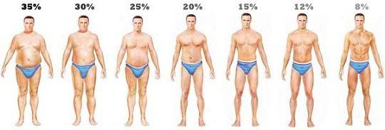 body-fat-levels-men