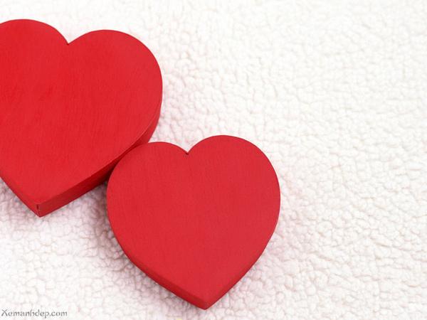 heart06.jpg