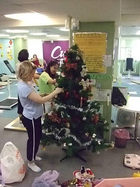怖置漂亮的聖誕樹
