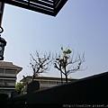 2014-03-01-10-27-47_photo.jpg