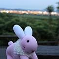 粉紅兔6.JPG