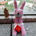 粉紅襪襪兔在陽台看書.bmp