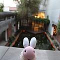 粉紅兔3.JPG
