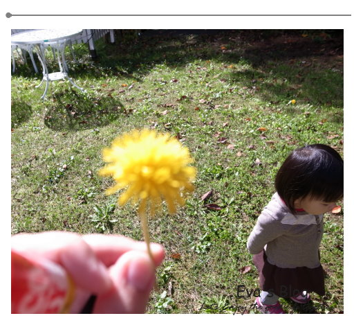 北海道婚禮 24.jpg