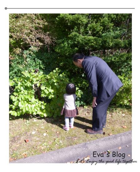 北海道婚禮 00.jpg