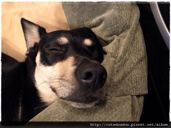 微笑的睡姿