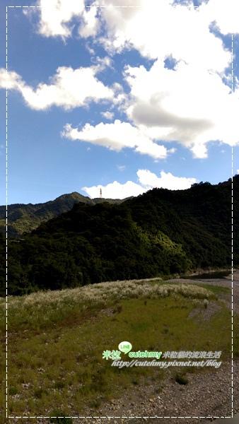 IMAG0050.jpg