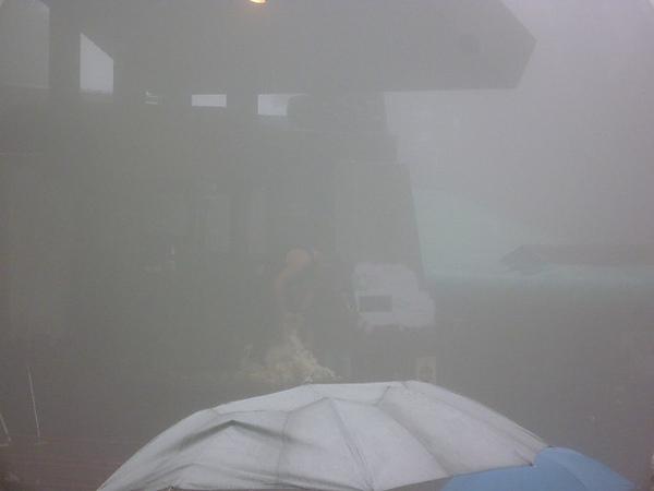 霧裡看花!不是啦~是霧裡看綿羊脫衣秀!聽說男人特愛這種朦龍美