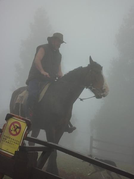 紐西蘭牛仔