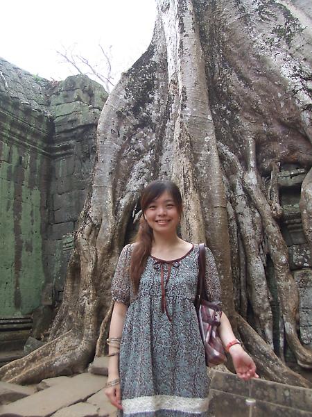 樹根包著建築