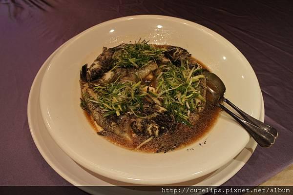 生猛筍殼魚