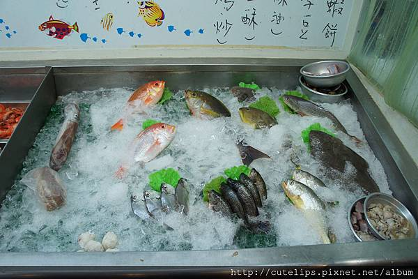 新鮮海產區