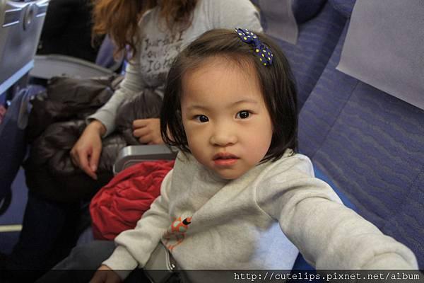 小希搭飛機