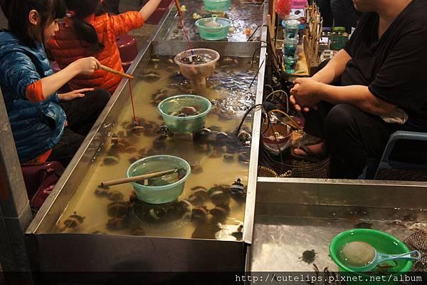 撈魚、釣烏龜