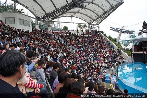 海獅劇場~滿滿的觀眾