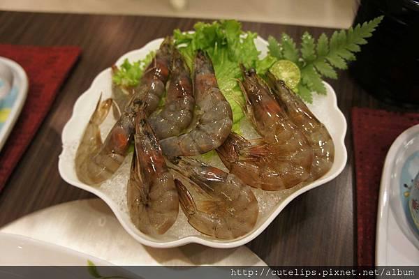 無毒養殖白蝦
