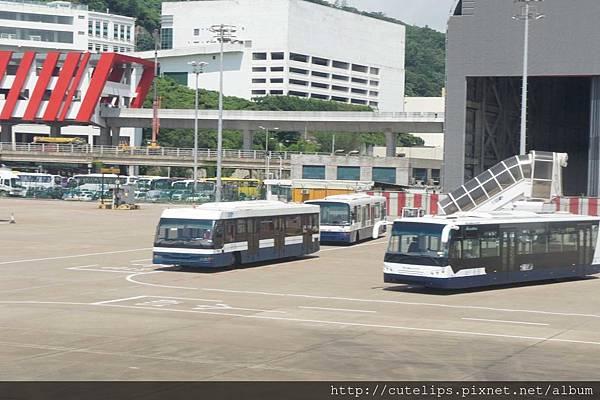 機場內接駁巴士