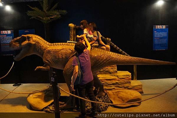 G02恐龍活現濠江-可以坐的的恐龍