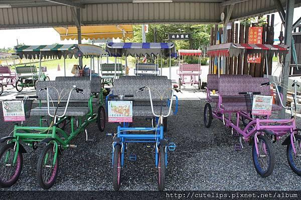 租車坊-4人腳踏車