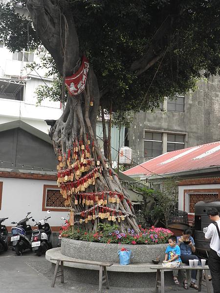 兩旁的大樹上都掛滿許願牌