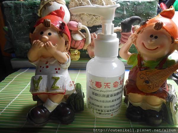 茶樹抗菌蘆薈凝膠(乾洗手1)