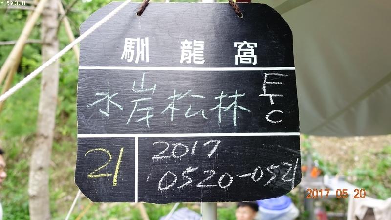 DSC09089.JPG