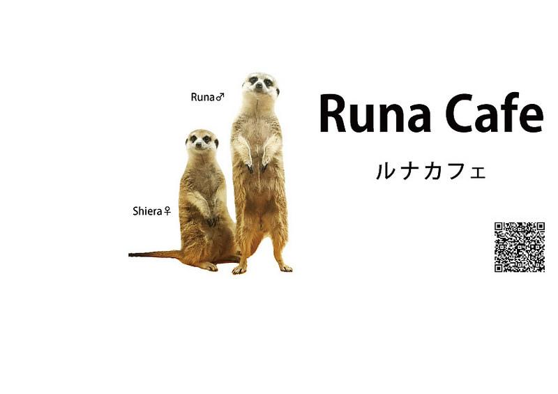(www.facebook.com)runa001