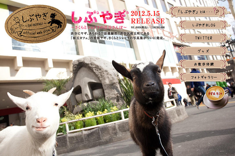 (www.udagawacafe.com)桜丘カフェ001