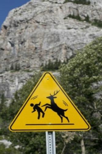 加拿大阿爾伯達省的山區
