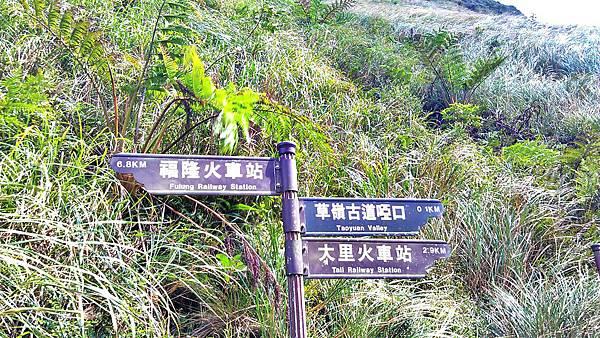 2012.10.10 草嶺古道_C360_2012-10-10-12-39-09