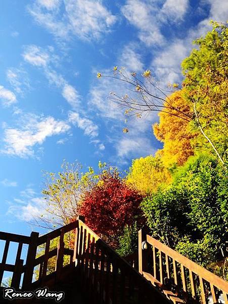 2012.10.27-28 家庭出遊-8嵐山小鎮_DSC_0358