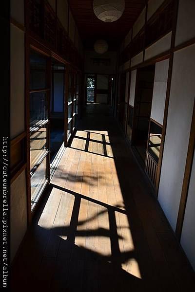 2013.01.31 平溪一日遊_DSC_7586.jpg
